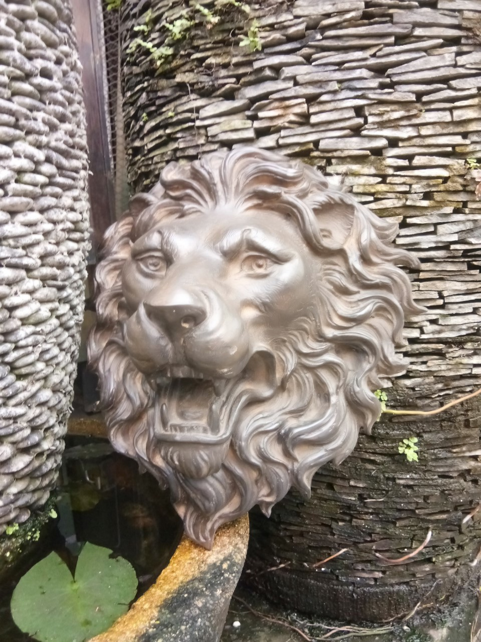 Fountain Lion wall material is brass Item Code FWL18 size wide 320 mm. long 370 mm.